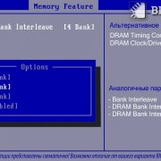 SDRAM Bank Interleave
