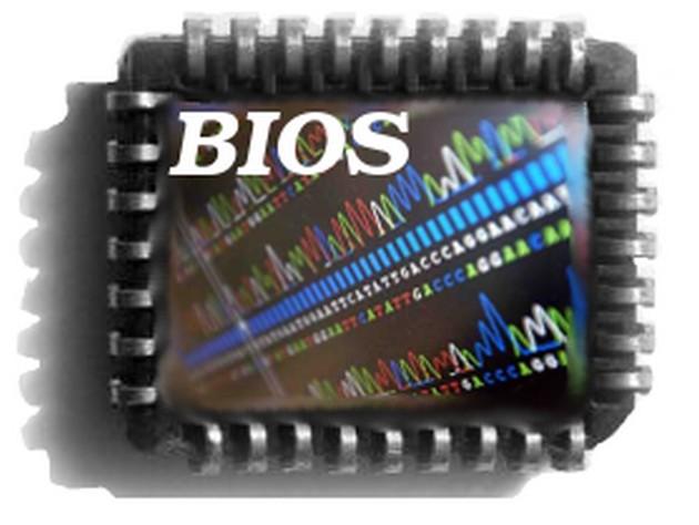 иллюстрация:биос-чип